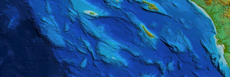 seamounts-cortes-tanner