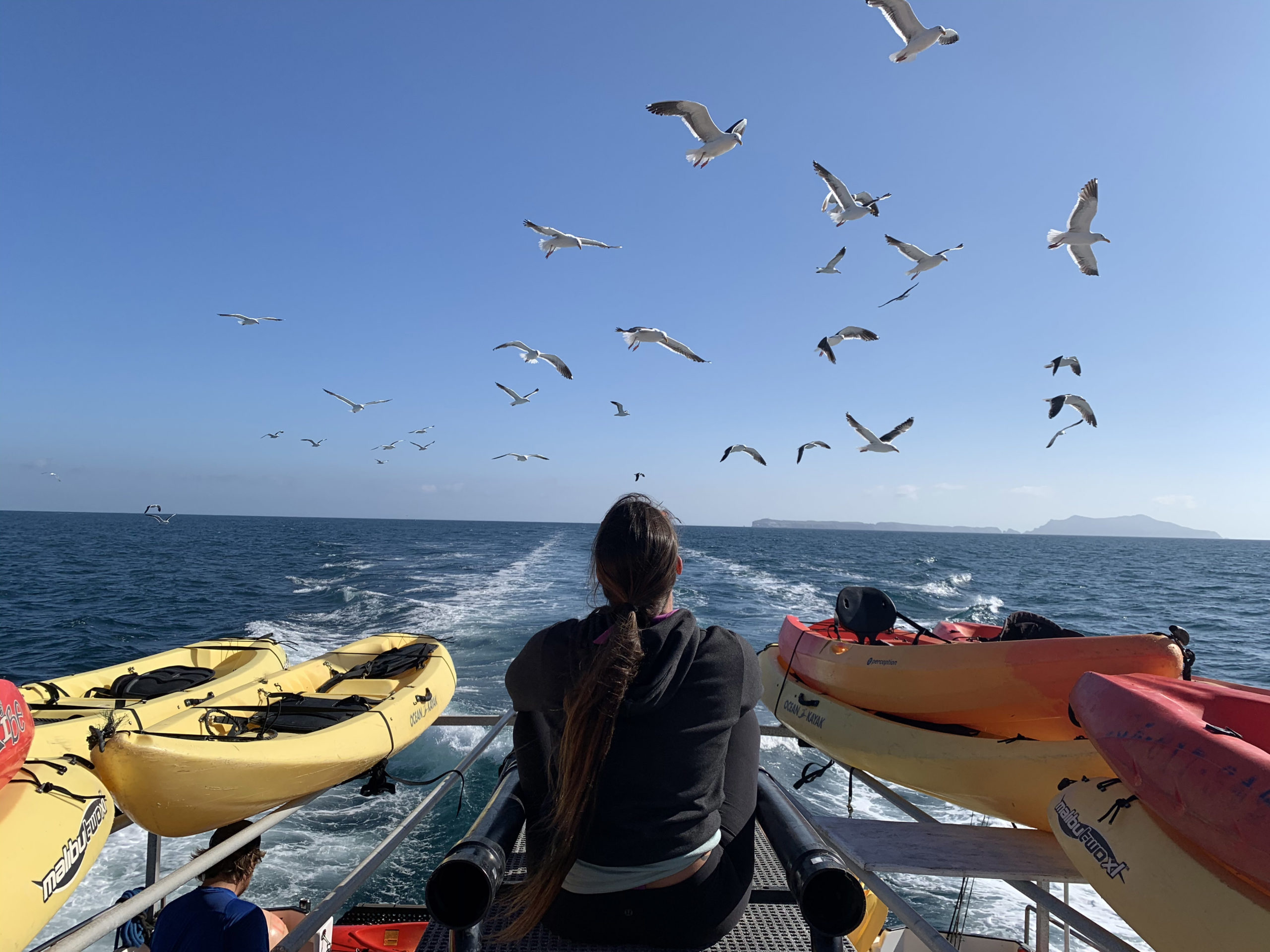 the boat ride to the channel islands is an experience in itself