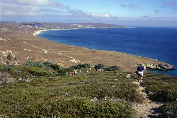 walking the desolate trail of the channel islands