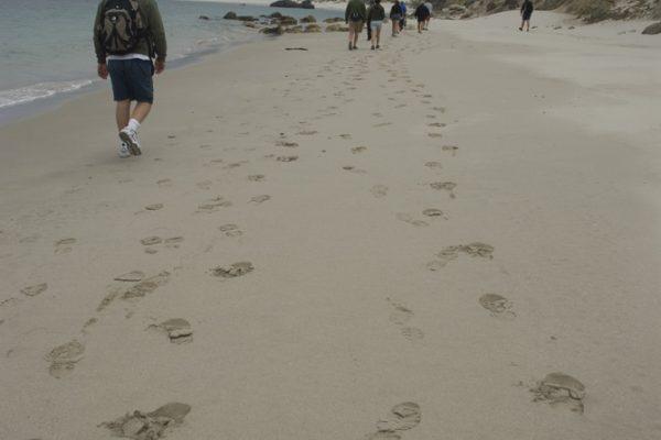 walking a quiet sandy beach on the channel islands