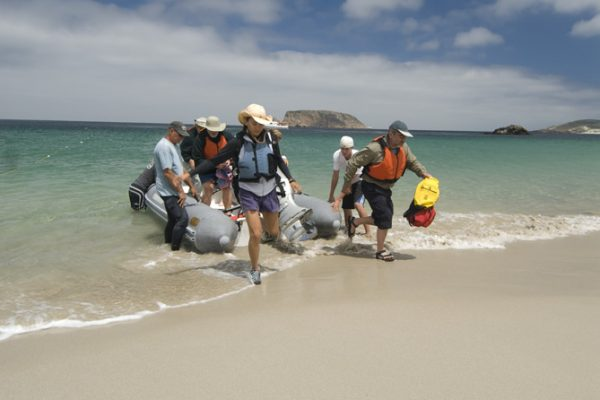 heading into a sandy beach on the channel islands