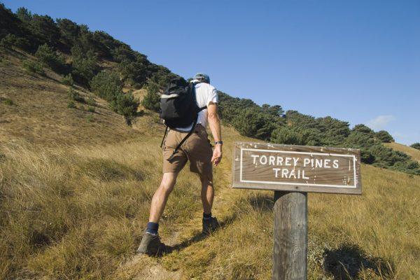 Torrey Pines Trail